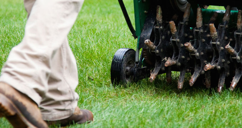 Knoxville_Lawn_Aeration