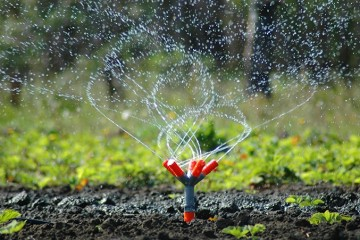Knoxville Irrigation & Lighting
